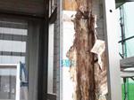 木部の腐食